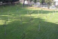 Ekoloska-sekcija-mseus-Travnik-1